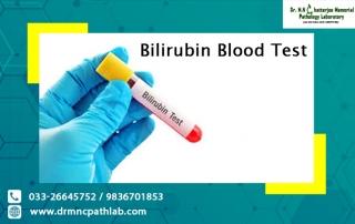 Bilirubin Blood Test
