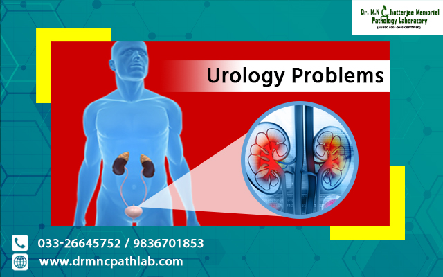 Urology Problems