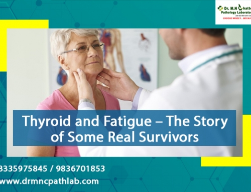 Thyroid and Fatigue – The Story of Some Real Survivors